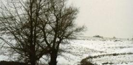 La nieve y otros complementos circunstanciales