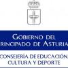 Convocaos los premios de novela, poesía, ensayu, lliteratura infantil/xuvenil y cómic en llingua asturiana