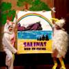 'Salinas, Mar en calma': mindfulness en la biblioteca