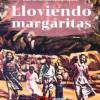 Presentación de 'Lloviendo margaritas' de Cristina Álvarez de Cienfuegos